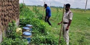 SafeValue must use [property]=binding: রামপুরহাটে তিনটি বালতি ভর্তি তাজা বোমা উদ্ধার, চাঞ্চল্য (see http://g.co/ng/security#xss)