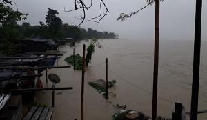 SafeValue must use [property]=binding: কোচবিহারে তোর্সা নদীতে ব্যাপক জলস্ফীতি (see http://g.co/ng/security#xss)